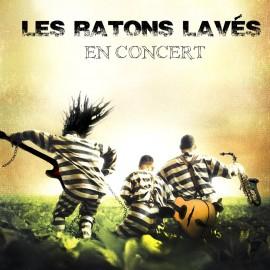 Concert Les ratons lavés Bordeaux