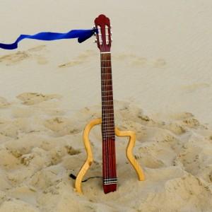 vent-de-guitares10