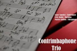 contrimbraphone trio